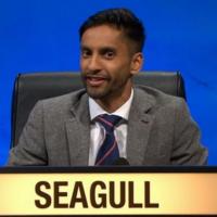 Bobby Seagull